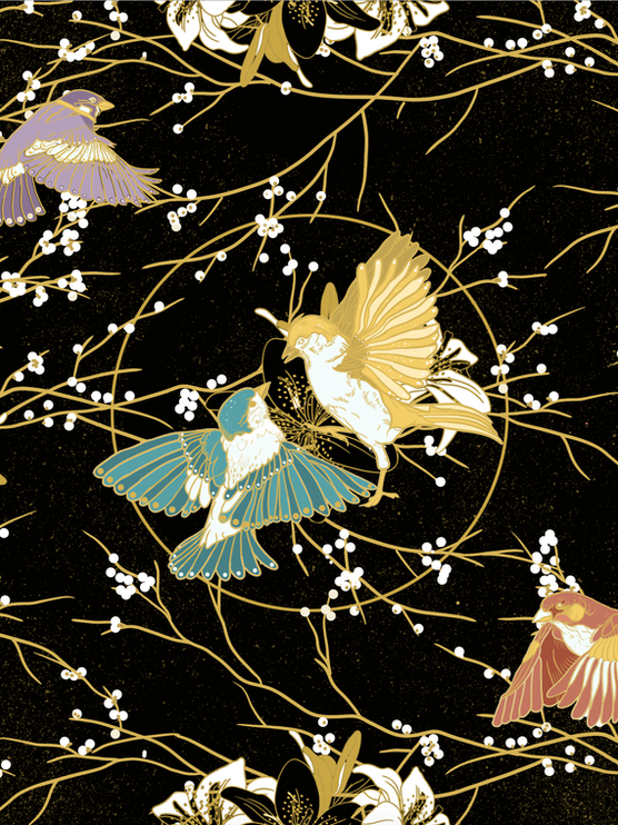 Birds & Circle