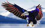 1266428-most-popular-eagle-and-flag-wall