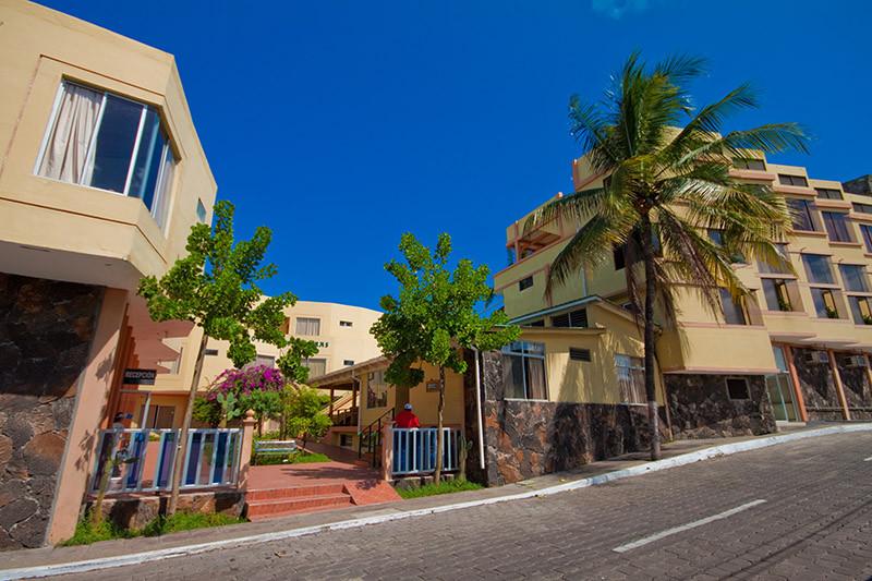 hotel palmeras.jpg