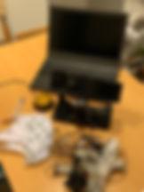 BALU2.jpg
