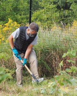 digging up ground