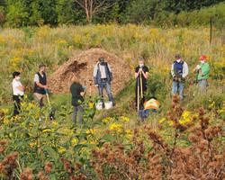 planting volunteers 2