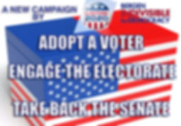 Adopt A Voter CAMPAIGN LOGO.jpg
