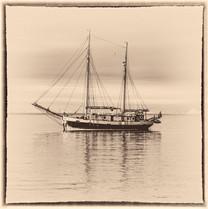 Donna Wood, Scoresbysund, Greenland