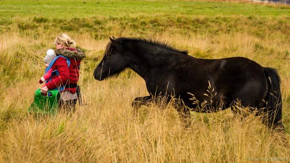 Our friend Birna at Garðshorn, Iceland