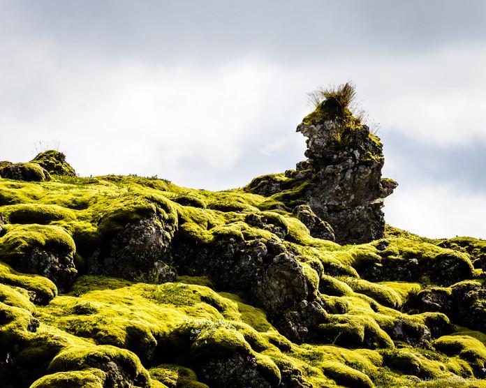 Eldhraun - Lava field