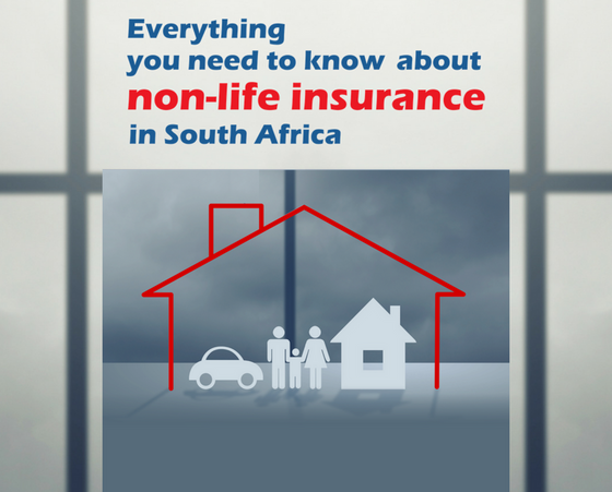 Launching an exciting overview of SA's non-life insurance sector