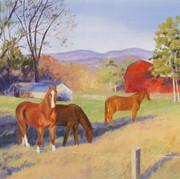 Horse Country: Cherokee County, Georgia