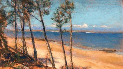Memory of Cumberland Island Beach