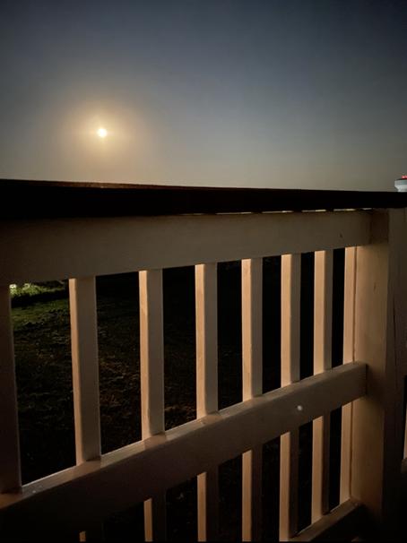 Staring at the full moon..