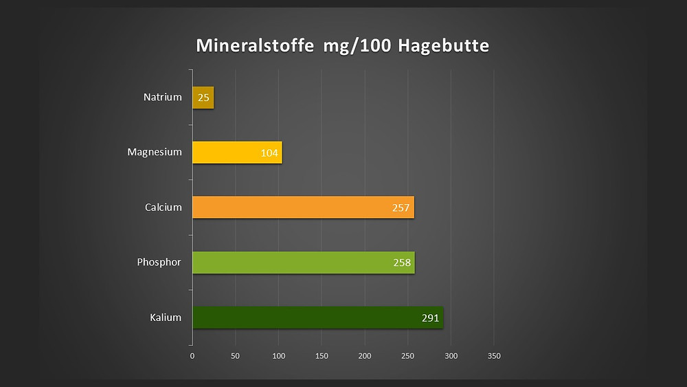 Mineralstoffe Anteile in der Hagebutte
