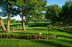 Yard and golfing