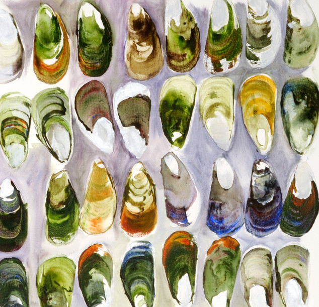 Kuku Green Shelled Mussel # 1  Shell Contemplation Series