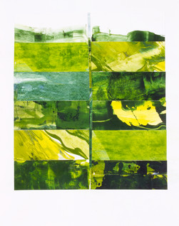 Greenfields # 5 : Landscape Subdivision Series