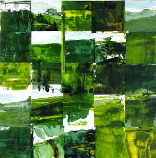 Waitakere Lifestyle Dream : Landscape Subdivision Series