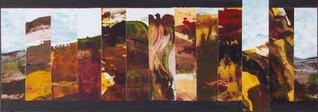 Waitakere Burning # 1 : Landscape Subdivision Series