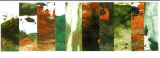 Destruction : Landscape Subdivision Series