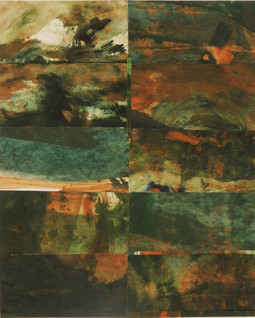 Fire on the Land : Landscape Subdivision Series