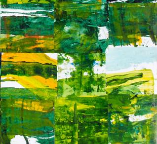 Taiapa # 5 : detail Landscape Subdivision