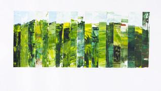 Slice of Paradise : Landscape Subdivison Series