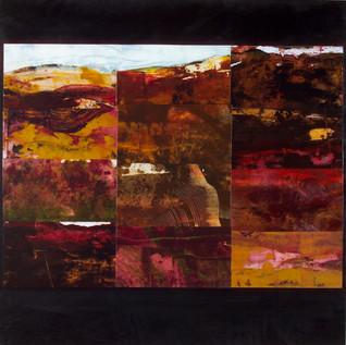 Charred Land # 1 : Landscape Subdivision Series