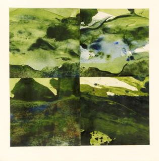 Elements : Landscape Subdivision Series