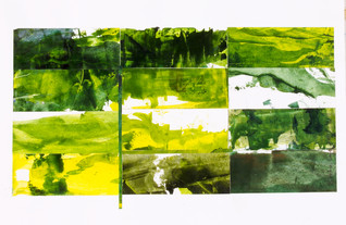 Greenfields # 1 : Landscape Subdivision Series