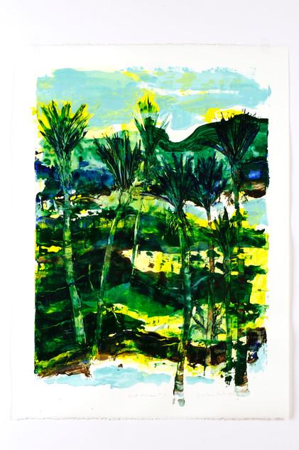Forest Nikau  (missing)