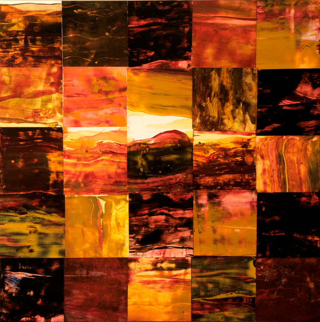 Forest Burning # 3 : Landscape Subdivision Series