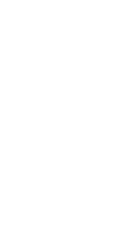 white%20waves_edited.png