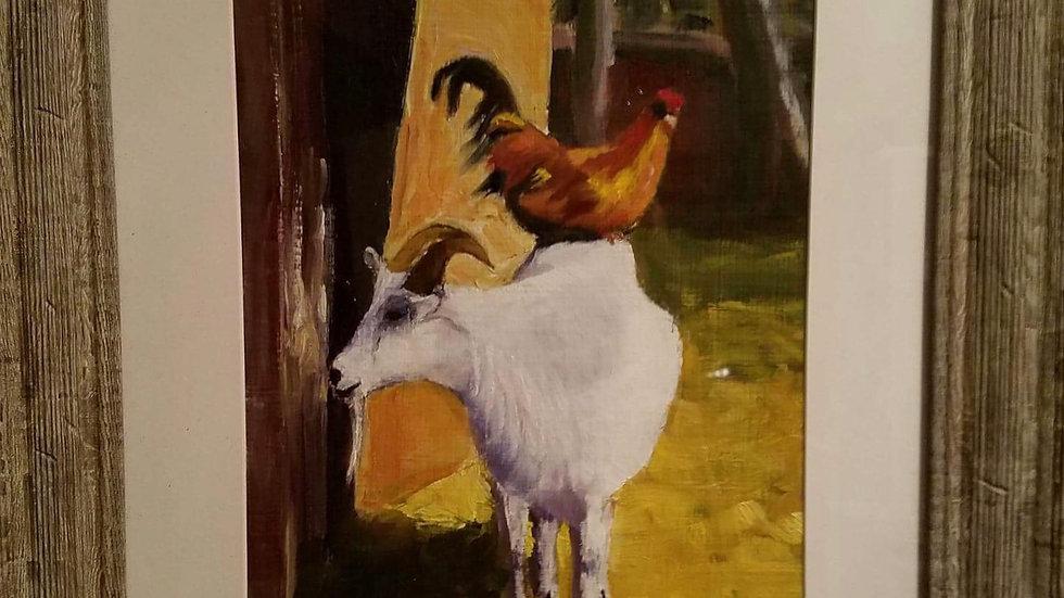 Chicken on Goat