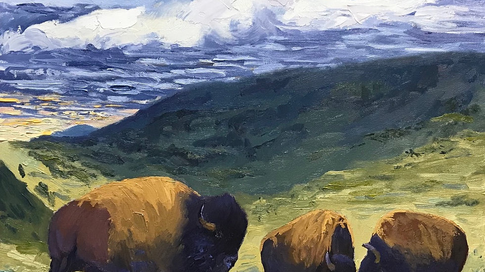 Buffalo Valley - Yellowstone