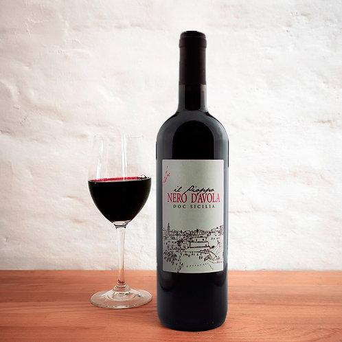Nero d'Avola - Il Pioppo - 2017 (organic red wine)