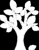 KBS Logo New White.png