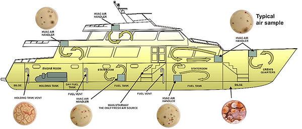 mold-removal-boat-03.jpg