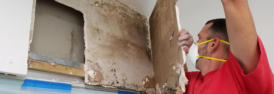 Common Causes of Investment Property Mold