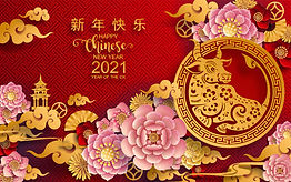 ano-novo-chines-do-boi_2021.jpg