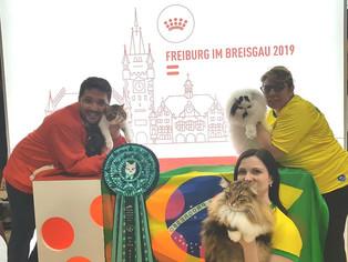 Brasil tem três campeões no World Cat Show 2019