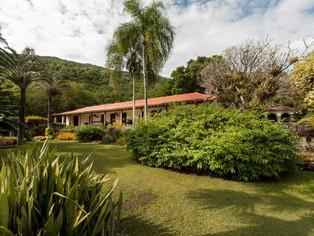 E-book gratuito permite 'passear' pelo Sítio onde morou o paisagista Burle Marx