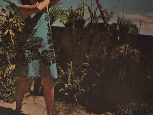 A artista carioca Anna Bella Geiger ganha uma das maiores retrospectivas da sua carreira, em São Pau