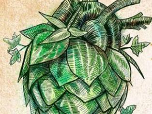 Festival Brasileiro da Cerveja antecipa repasse das vendas