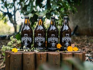 Colorado lança quatro versões da Appia com mel de diferentes espécies de abelhas nativas brasileiras