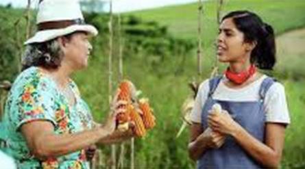 Gravação do programa de Bela Gil na fazenda de Anita