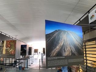 No seu aniversário de 99 anos, Paraisópolis ganha exposição de fotos do ambientalista francês Arthus