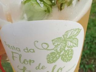Nova Friburgo quer selo de indicação geográfica para cerveja da região