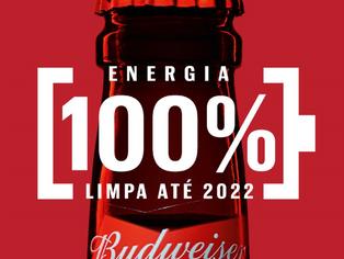 Ambev anuncia construção de parque eólico na Bahia para produção de Budweiser