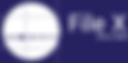 File X Logo for Mobile