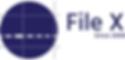 File X Logo