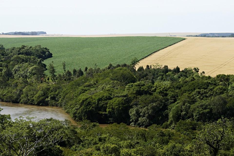 PIB Verde: patrimônio ecológico do Brasil será calculado pelo IBGE