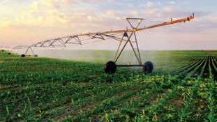 Tem água para mais irrigação?